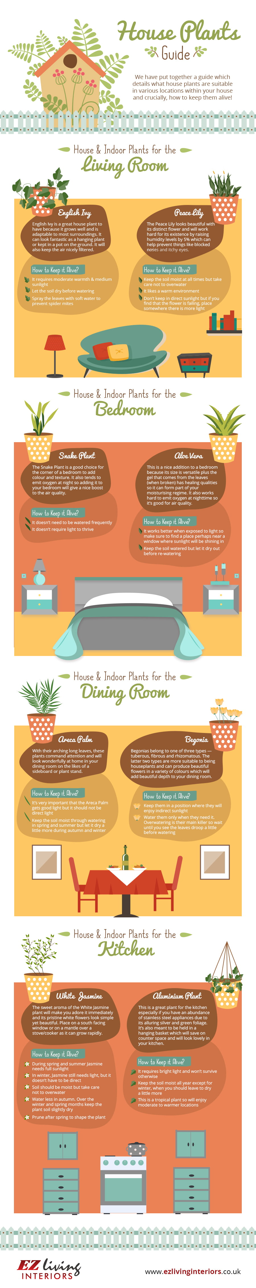 House Plants (Info-graphic)