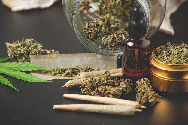 the basics of cannabis