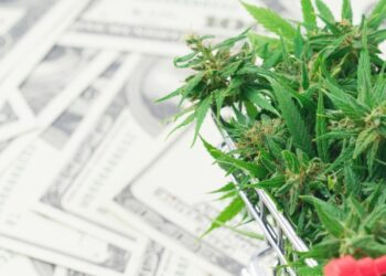 Ideas for Buying Marijuana